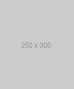 250x300